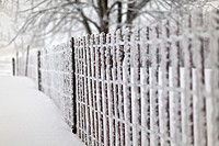 Snow and heavy frost on drift fencing