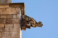 Gargoyle, St Peter cathedral, Regensburg, Upper Palatinate, Bavaria, Germany