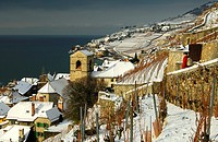 The municipality of Saint-Saphorin between snow-covered vineyards and Lake Geneva, Lac Leman, in the UNESCO World Heritage site Lavaux, Switzerland