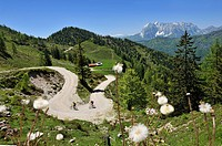 Mountain bikers, downhill to Kreuzangeralm, Mt. Wilder Kaiser at back, in Tyrol, Austria, Reit im Winkl, Bavaria, Germany, Europe