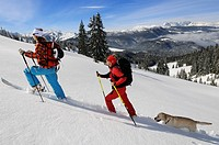 Cross country skiers on Duerrnbachhorn Mountain, Reit im Winkl, Chiemgau, Upper Bavaria, Germany, Europe
