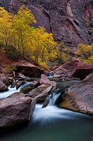 USA, Utah, Zion National Park. Waterfall with cottonwood trees along Riverside Walk. Credit: Nancy Rotenberg / Jaynes Gallery / DanitaDelimont.com