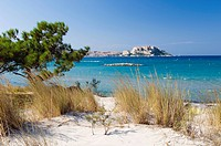 Sandy beach with view to the citadel of Calvi, Balagne, Corsica, France, Europe