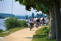 Cyclists on promenade at the river Rhein, Hesse, Germany, Europe