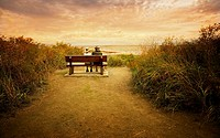 old couple on bench overlooking ocean