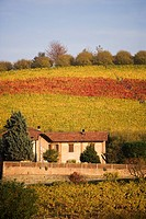 Farm house near Serralunga d´Alba, Langhe, Piedmont, Italy