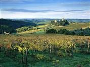 Badia a Passignano, Monastery, Winery Antinori, Chianti, Tuscany, Italy