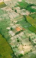 Aerial view of field , Andhra Pradesh , India