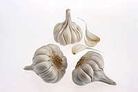 Indian spices , full garlic bulbs and cloves allium sativum on white background