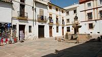 Fountain in Plaza del Potro  Cordoba  Andalusia  Spain
