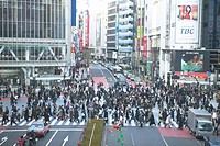 Crowd Crossing Street