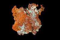 Native Copper - Cu - Ray mine - Arizona - USA - Copper is perhaps the most important economically useful metal