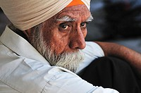 Old Sikh man sitting in the shade in the GoldenTemple complex, Punjab Amritsar India
