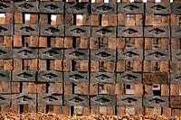 Wet bricks kept for drying in brick factory , Sangli , Maharashtra , India