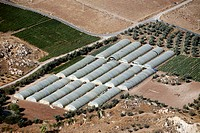 Vegetables hothouse with Karak to the south of the city of Amman of the capital of Jordan in Arabia.