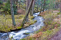 Acebedas river in the Sierra de Guadarrama Segovia Castilla León Spain