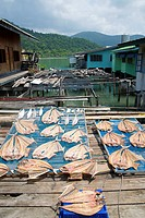Dried fish, stilt houses, Ban Bao, Koh Chang Island, Thailand, Asia