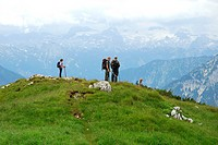 Hikers in the nature preservation area, landscape at the Loser Berg mountain, Altaussee, Bad Aussee, Ausseerland, Totes Gebirge, Salzkammergut, Styria...
