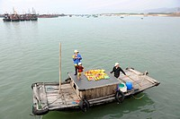 Vietnamese family selling fruit from the boat, Halong Bay, Vinh Ha Long, North Vietnam, Vietnam, Southeast Asia, Asia