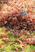 Caucasian boy playing in autumn leaves