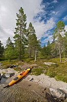 Kayak on Lake Rogen, Rogen nature preserve, Haerjedalen, Sweden, Scandinavia, Europe