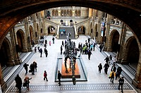 Visitors in the Great Hall of The Natural History Museum, Kensington, London, England, UK
