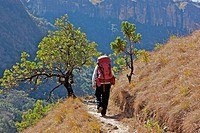 Female hiker on mountain trail, Njesuthi valley, KwaZulu_Natal Province, South Africa
