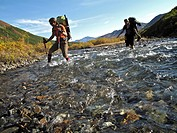 Two female hikers with walking sticks crosses Windy Creek along the Sanctuary River Trail in Denali National Park, Interior Alaska, Autumn