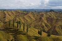 View from the Lost World Highway, New Zealand