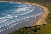 Waves rolling ashore on the Catlins Coast, South Island, New Zealand