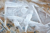 Ice crystals in a frozen creek (thumbnail)