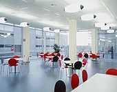 Contemporary office lunch room