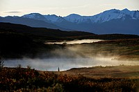 Steam rising from the beaver ponds into the cold air, early morning, Denali National Park, Alaska