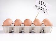 Carton of organic eggs...