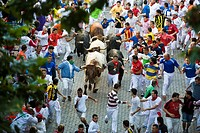 Spain, Navarra, Pamplona, Fiesta, the bull rush                                                                                                       ...