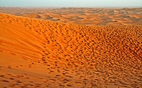 Desert dunes, United Arab Emirates