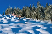 Powder snow on the moguls of Thompson's Run in Red Lodge, Montana, USA