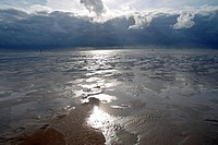 North Sea Coast, St Peter Ording, Schleswig-Holstein, Germany