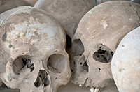 Choeung Ek, Killing Fields, 8985 skulls of victims laid out in a mausoleum behind glass, Phnom Penh, Cambodia, Southeast Asia