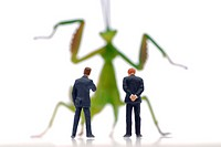 Miniature businessmen figures in front of a locust, symbolic image for hedge funds