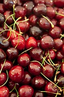 fresh cherries for sale
