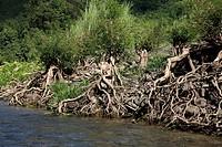 Natural view of the Sangu river Bandarban, Bangladesh December 2009