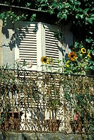 Shutters of a window with flowers on a balcony
