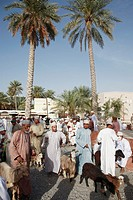 Oman, Al-Dakhiliyah, Nizwa, livestock souq, goats, people.