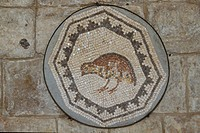 Museum of Byzantine mosaïcs in the palace