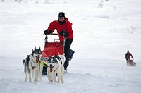 A woman with a dog sledge.