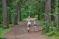 Mother and Young Girl Walking in Forest Holding Hands, Põlva County, Estonia