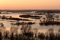 Biebrza National Park Spring floodplain of Biebrza and Narew river Sunset Poland . View from Strekowa Gora