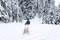 woman sitting on a sled in the winter on the toboggan run