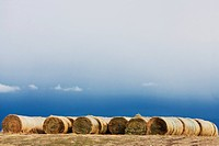 Hay bales in a field, Montana, USA